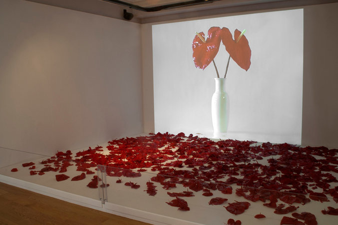 Mona Oren - Exhibition and window display